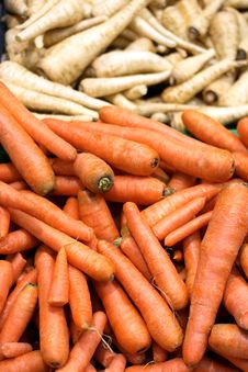 Free Carrot And Parsley Royalty Free Stock Image - 5342636