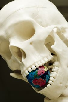Free Skull III Stock Photo - 5343760