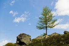 Free Flüela Pass; Switzerland Royalty Free Stock Photography - 5346037