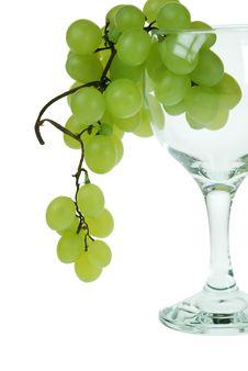 Free Grape Royalty Free Stock Photos - 5346408