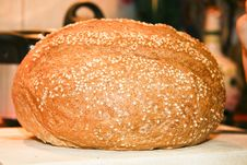 Free Fresh Bread Royalty Free Stock Image - 5346666