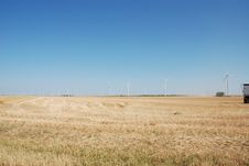 Wheat Field And Wind Electricity Generaters Royalty Free Stock Image