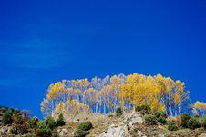 Free Sky Stock Image - 5349411
