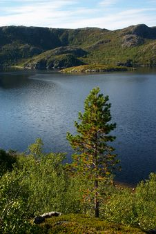 Free Landscape Of Wild Fiord In Norway Stock Photos - 5349853