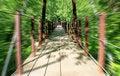 Free Walking Bridge Royalty Free Stock Photography - 5356017