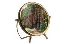 Free Mirror With Forest Stock Photos - 5350483