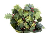 Free Christmas Holly Stock Photo - 5352570