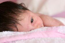 Free Little Newborn Royalty Free Stock Photos - 5353348