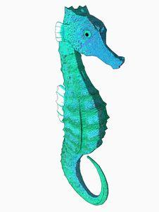 Free Cartoon Seahorse Royalty Free Stock Images - 5353919