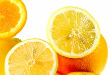 Free Oranges Stock Images - 5354944