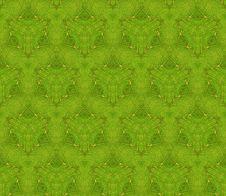 Free Texture Stock Image - 5355911