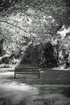 Free Park Bench Stock Photography - 5356002