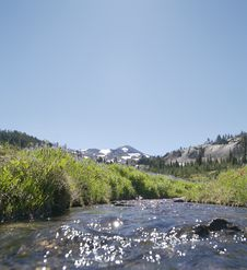Free Sunshine Meadow Creek Stock Photography - 5356272