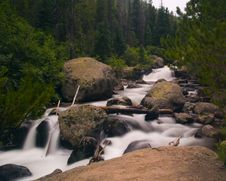 Free White River In A Green Forest Stock Photography - 5356422