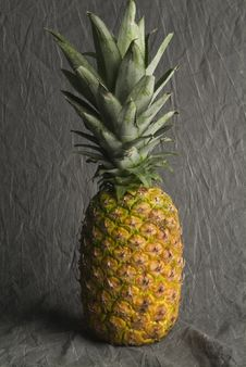 Free Pineapple Royalty Free Stock Photo - 5357505