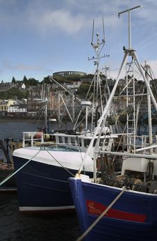 Free Fishing Boats In Oban Harbour Stock Photos - 5357823