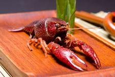 Free Crawfish Close Up Stock Images - 5358214