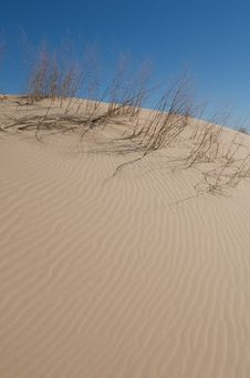 Free Sand Dunes With Tall Grass And A Blue Sky Stock Image - 5358371