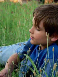 Free Little Boy Blue In The Grass Royalty Free Stock Photo - 5359495
