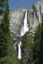 Free Yosemite National Park Royalty Free Stock Images - 5367019