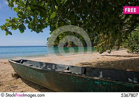 Free Caribbean Beach Royalty Free Stock Photography - 5367807