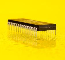 Free Microprocessor Stock Photography - 5360922