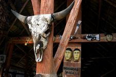 Free Skull Of A Bull Hung Up On A Pillar. Royalty Free Stock Images - 5363519
