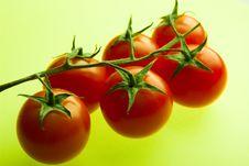 Free Cherry Tomato Stock Images - 5364294