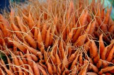 Free Fresh Bunch Of Carrots Stock Photos - 5366753