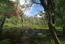 Free Zion National Park Standing Water Stock Photo - 5367470