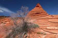 Sandstone Vermillion Cliffs Royalty Free Stock Photo