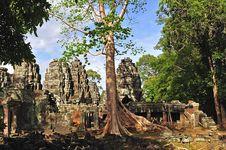 Free Cambodia, Angkor: The Preah Khan Royalty Free Stock Photo - 5368635