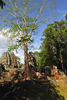 Free Cambodia, Angkor: The Preah Khan Stock Image - 5368691