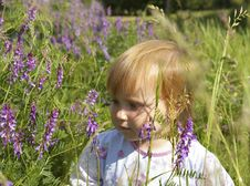Free Little Girl And Field Flowers Stock Photography - 5369732