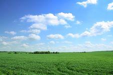 Free Summer Landscape Royalty Free Stock Image - 5369976