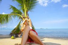 Free Under The Palm Royalty Free Stock Images - 5370879