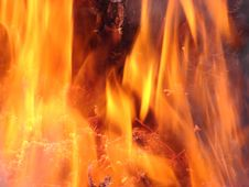 FIRE !!! Royalty Free Stock Images