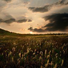 Free Sunset Royalty Free Stock Photo - 5372645