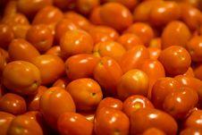 Fresh Organic Roma Tomatoes Royalty Free Stock Photos