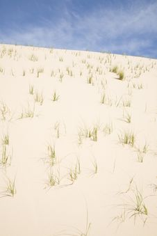 Grassy Dune (vertical) Royalty Free Stock Images