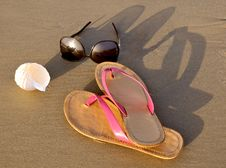 Free Beach Still Life Royalty Free Stock Photo - 5373975