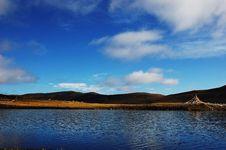 Beautiful Lake On Field Royalty Free Stock Photo