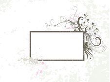 Free Flora Stock Image - 5374651