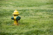 Fire Hydrant Yellow Green Royalty Free Stock Photo