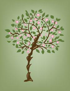 Free Spring Tree Royalty Free Stock Photo - 5377115