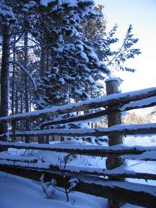 Free The Siberian Village Stock Photography - 5377722