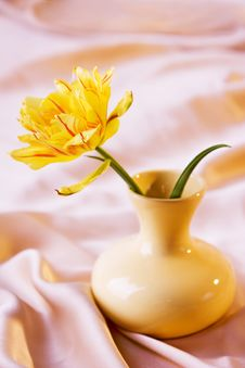 Yellow Tulip In Vase Stock Photography