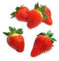Free Delicious Strawberries Royalty Free Stock Photos - 5380778
