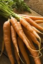 Free Bunch Of Carrots Royalty Free Stock Image - 5380846