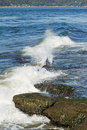 Free Crashing Wave Stock Photos - 5384573